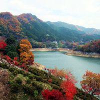 美杉の秋 −君が野ダム・北畠神社−