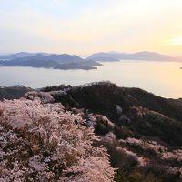 四国の桜風景4 しまなみ海道〜岩城島、積善山の三千本桜〜(再表示)