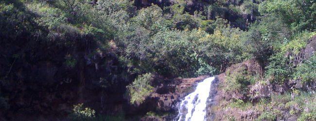 ワイメア渓谷州立公園