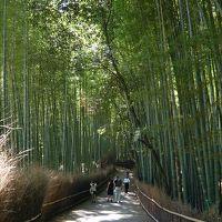 ふらりと、京都へ ~猛暑の中でパワースポット&世界遺産巡り