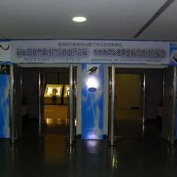 【ちょっとお出掛け】「ケナガマンモス全身骨格標本展示」に行ってみた。
