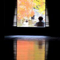 岡山/紅葉が見頃の旧閑谷学校