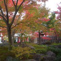 鹿島祐徳稲荷神社及び日本庭園紅葉