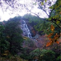 2010 秋 大杉谷