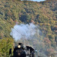 SLと紅葉の景色を求めて、秩父鉄道乗り鉄の旅!