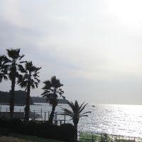 しまっていこうーー!おぅ!冬の海 @ 三戸浜