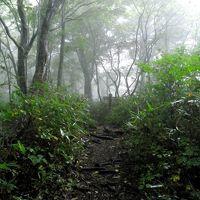 〜山歩き〜 世界遺産の白神山地を観たくて白神岳へ