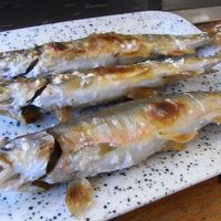 鮎を食べに和知まで行きました