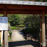 平塚市総合公園・・・日本庭園