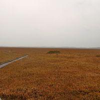 稚内秋の旅4-宮の台展望台,サロベツ湿原センター草紅葉,オトンルイ風力発電所