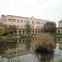 秋雨の中で賑わう大学のキャンパス