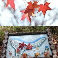 Solitary Journey [964] 秋たけなわ、紅葉も真っ盛りのはずですが・・・ <八千代湖畔のどごえ公園/土師ダム>広島県安芸高田市