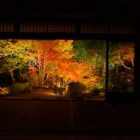 色葉にほふ京都旅行�:光明寺、圓光寺、蓮華寺、天授庵