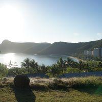 楽しんだぜ!! 2011 オーストラリア 『キャッツアイビーチでサンライズが見れてテンション上がる♪バギーで島をまわって楽しんだぜ♪コアラを抱くが男が嫌いなのか??最終日は天気が良すぎて日差しが痛い!!』 IN ハミルトン島