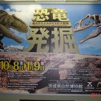 ミュージアムパーク自然博物館見学&周辺バードウォッチング [2011](1) 恐竜編