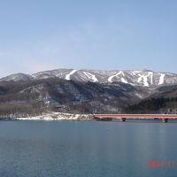 入畑ダムでバードウォッチング [2011](1)