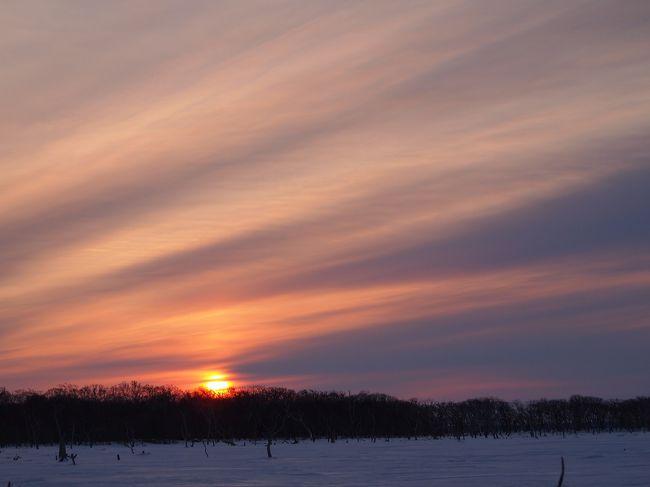 冬の道東に行ってきました。<br /><br />ずっと見て見たかった流氷。<br /><br />まさかこんなに早く見ることができるなんて夢にも思いませんでした。<br /><br />写真では何度も目にしていた流氷。やっぱり何でも百聞は一見にしかず。。。<br /><br />こんなに素晴らしいくて壮大な景色があるなんて!<br /><br />自然のすごさをあらためて知ることができました。<br /><br />初日は中標津から野付へ♪<br /><br />岸と海の境目がわからないほどの流氷に初日から大興奮!!!!!<br /><br />寒さで手が痛いのにはびっくりしましたが、景色は最高でした。