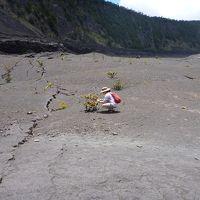 ハワイ島 キラウエア・イキ・トレイルで地熱パワーを感じる。(ボルケーノ)(2012.6)