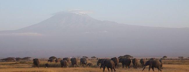 2012夏 ケニア旅行8日間 1・2日目