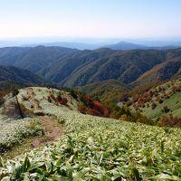 紅葉のパッチワーク 大川入山に登る♪