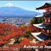 さわやか紅葉ドライブ♪ 富士山周辺で日本の秋を満喫しよう