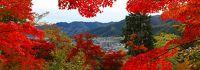 湯村温泉・氷ノ山・ハチ高原 ホテル