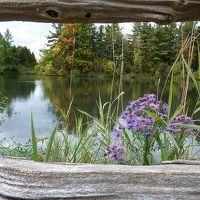 アッパー・カナダ・ヴィレッジ フェルメールの絵のように穏やかな・・