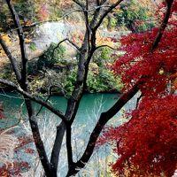 晩秋、哀愁−−−丹沢湖−−。