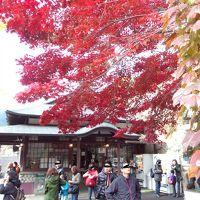 紅葉にはもはや遅参( ̄ー ̄;~ 武蔵御嶽神社参拝&つるつる温泉