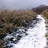 1000m峰はすでに冬山