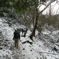 初冬の『日本の滝百選/八ツ淵の滝』 で山歩きオフ会【前編】