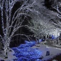 2012 琴滝イルミネーションは「ホワイト冬ほたる」に