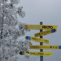 芸北国際とサイオトでスキー