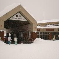 20130220 雪質最高 グランデコ