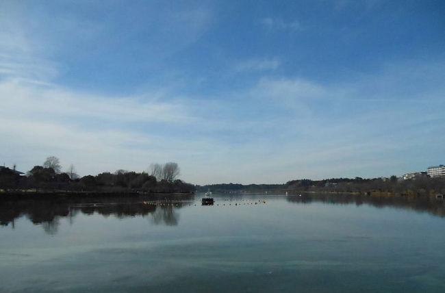 水戸市千波湖(せんばこ)で、バードウォッチングを楽しみました。<br /><br />表紙写真は、千波湖の風景です。<br /><br />※ 2016.02.11 位置情報登録