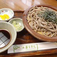 山形子連れ里帰り2013〜船と麺の旅〜後編