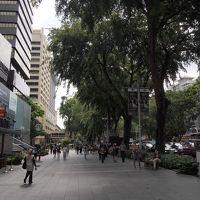 鳥インフルもノープロブレム! シンガポール-香港GW 前篇
