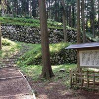 能登七尾は歴史や文化と美味しい町(日本100名城攻略記)