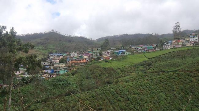 タージマハルを観たくてインドに来たものの,あまりの貧困,不衛生,喧騒に面食らい,インドなどもう二度と来るものか、と思う人は少なくない。北インドでの試練を乗り越えた者には,インドへの扉は大きく開かれると思う。<br /><br />今回訪れたのは東西南北で言うと,2度目のインド旅行と同じく南だが、前回は東海岸のタミル・ナードゥ州の遺跡・寺院が中心だったのに対し,今回は西海岸のケララ州。前回まではレガシーキャリアで飛んで,日本語スルーガイド付きの至れり尽くせりのツアーだったのに対し,今回はLCCを使い,英語ドライバーガイドのインド国内手配のみ、経済性を重視した個人旅行でチャレンジしてみた。<br /><br />欧米ツーリスト多く訪れるコロニアルな港町の街並みが残るコーチン,紅茶の産地で南インド随一の高原避暑地ムンナー(地○の歩き方には載っていない)を訪れた。<br /><br />[1日目]<br />22:00 コチン着(クアラルンプールより)<br />24:00 ホテル着<br />コチン泊<br /><br />[2日目]<br />日中、コチン観光<br />チャイニーズフィッシングネット、ユダヤ人街、聖フランシス教会<br />夜、民俗舞踊劇カタカリ観賞<br />コチン泊<br /><br />[3日目]<br />午前中、観光(ダッチパレス)、買い物、散策<br />午後、ムンナーに移動(プライベートカーで4時間)<br />ムンナー泊<br /><br />[4日目]<br />日中、ムンナー観光(Top Station、KDHP紅茶博物館,エラヴィクラム国立公園)<br />夕刻、コーチン国際空港へ<br />23:00 出国(クアラルンプールへ)<br /><br /><br />旅の難易度:★★★   ツアーでもインド経験者であれば何とかなるレベル<br />物価の安さ:★★★★☆ <br />治安・安全:★★★★  コーチン自体は日中であれば問題ない <br />衛生状態 :★★★   インドの中ではかなりマシな方。インドは安全な水と食事を得ることは難しくない<br />食の充実度:★★★      北インドに比べると変化がある。米中心なので,日本人の味覚に会いやすい。  <br />人の親切度:★★★★  お金を取ってやろう、というギラギラした感じがなく,南国特有のゆるい感じの人が多い。<br />英語通用度:★★★★☆ 通じないところはほとんどなかった。<br />日本語通用度:-<br />獲得経験値:★★★★