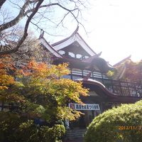 紅葉も見ごたえたっぷり信州「高遠城址公園」