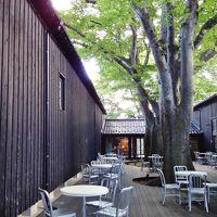 海洋交易で栄えた酒田の街、まず『山居倉庫』へ