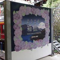 温泉いいね〜♪ う〜ちゃん初めてのロマンスカー乗車で箱根日帰り旅よ〜♪
