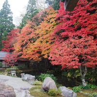 2009.11 京都10日間(5〜6日目)