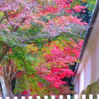 秋の播州路、霊場めぐり(2)
