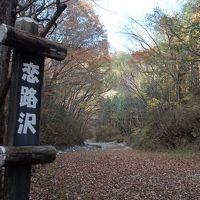 紅葉の鬼怒川温泉から川治温泉ハイキング~紅葉の素晴らしい少しハードな恋路沢ハイキングコース~