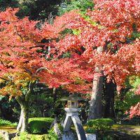 北陸へ:温泉と紅葉