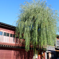 いいね金沢【下の巻】21世紀美術館&ひがし茶屋町の美味しいもの、自由軒でランチタイム♪茶房一笑でティータイム♪