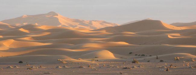 266.Morocco メルズーカ大砂丘 [モロッコ...