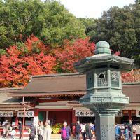 福岡神社巡り