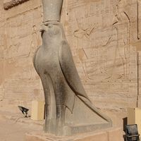 エジプト ギザプラミッドとナイル川クルーズで巨大遺跡観光その4 エドフとコムオンボ観光
